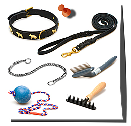 Dog Accessories & Training Aids